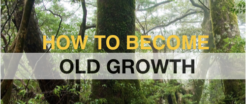 [Or maintain your Old Growth]